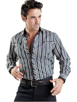 dress_shirt_png8094